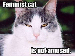 feminist cat is not amused
